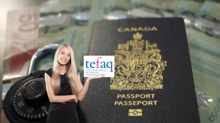 إعداد TEF / TEFaQ عبر الإنترنت