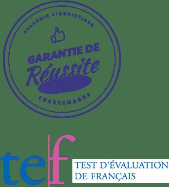 TEF preparation course
